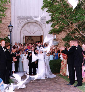 We will add that perfect touch to all your cherished moments with a white dove release!